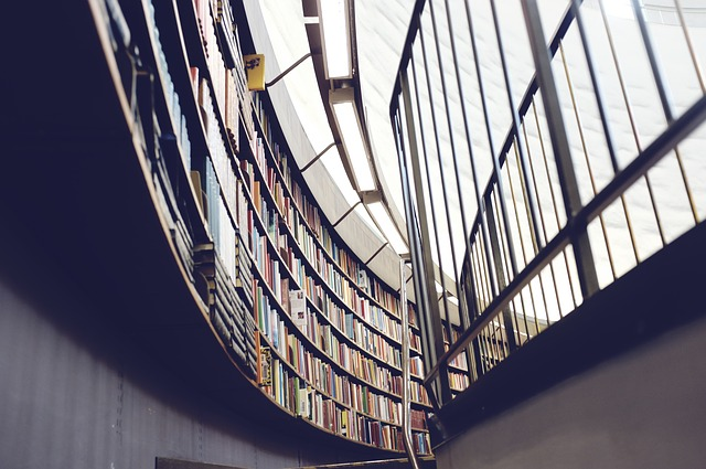 library-438389_640