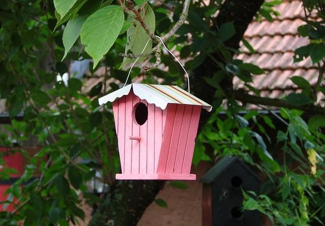 aviary-246412_640