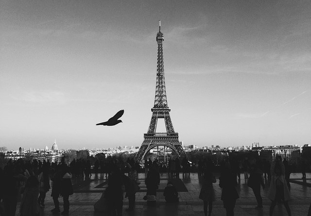 eiffel-tower-351492_640
