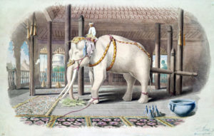 Help to Buy – Buyer Beware! Avoiding equity loans for white elephants